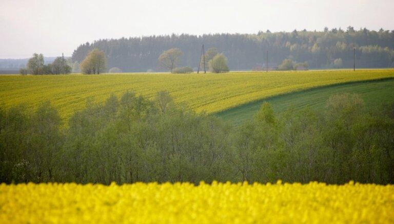 Kopējai lauksaimniecības politikai jābūt taisnīgākai, min 'Zemnieku saeima'