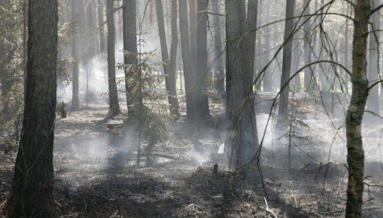 Paaugstināts brīdinājuma līmenis par ugunsbīstamību Igaunijā