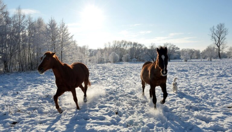 В четверг в Латвии сохранится мороз и выглянет солнце