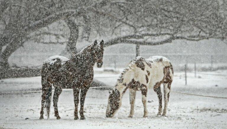 Otrdien vietām Kurzemē stipri snigs un putinās