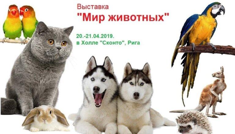 """""""Мир животных"""": 20—21 апреля в Холле Сконто"""