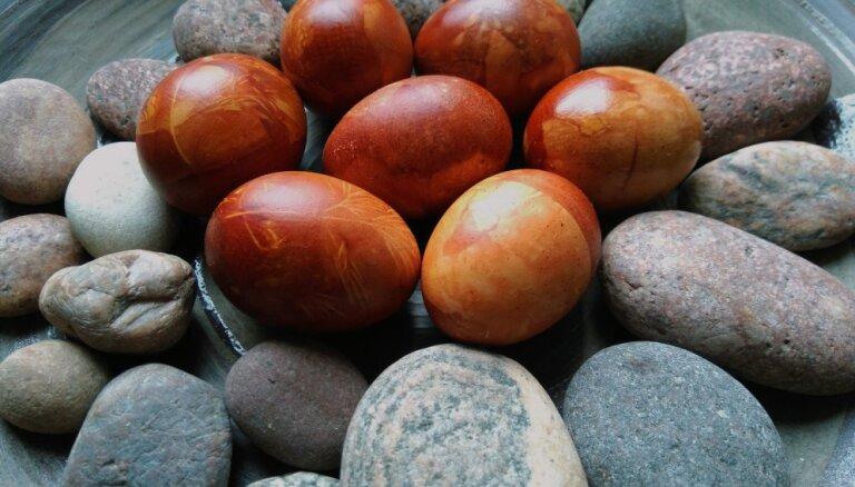Portāla 'Delfi' lasītāja Lieldienu recepte 'ilgtspējīgu olu' krāsošanai