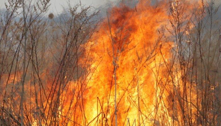 Jēkabpilī otrdien četri plaši kūlas ugunsgrēki; VUGD dzēšanā iesaista papildspēkus