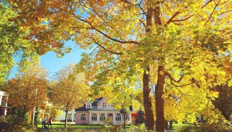 Zelta rudens Latvijā – lasītāji dalās ar krāšņiem foto
