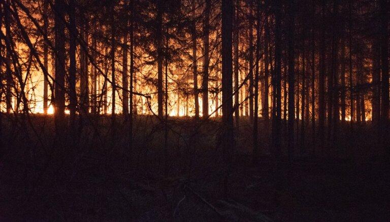Gads kopš gadsimta ugunsgrēka – zaudējumi miljonos, vainīgo nav