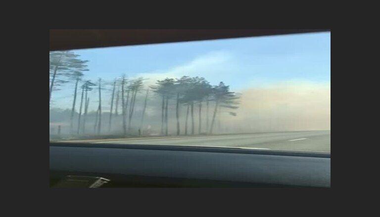 Video: Pamatīgs kūlas un meža ugunsgrēks izcēlies Varakļānu novadā