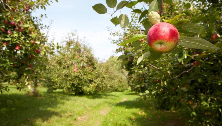 LLU pārraudzībā nodos lauksaimniecības zinātniskos institūtus