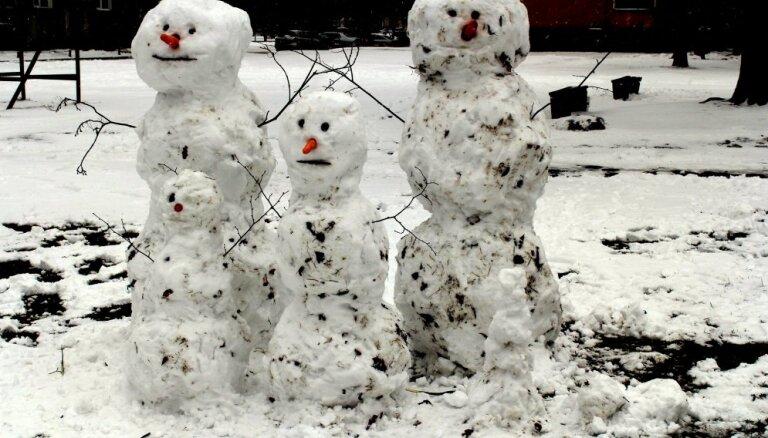 Foto: Sniegavīru ģimenīte izbauda pēdējos ziemas mirkļus