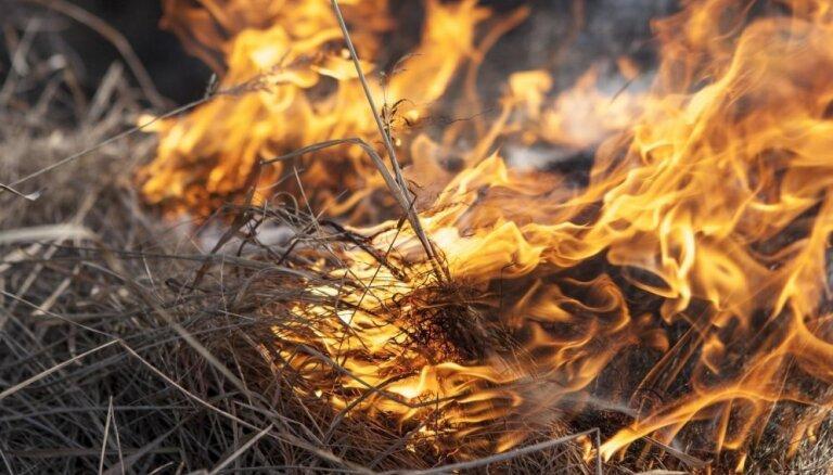 Полиция выяснила, кто поджег траву в Елгавском крае