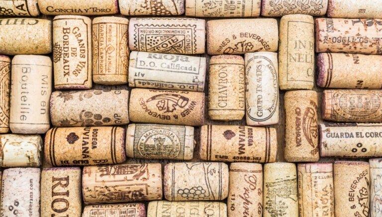 Foto pamācība: Dekoratīvi augi vīna korķos