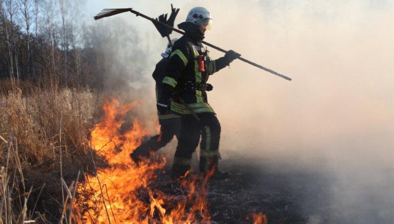 Пожар возле Кишэзерса: со стороны Яунциемса выгорело 5 гектаров