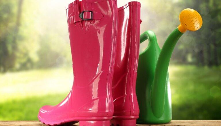 Во вторник местами возможны кратковременные дожди