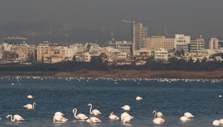 """Кипр """"косметически"""" ужесточил получение """"золотых паспортов"""": платить придется больше"""