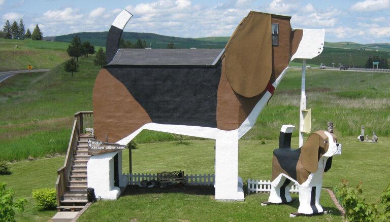 Гриб, собака, силосная башня: Топ-10 самых необычных отелей в мире