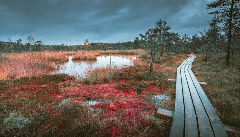 Ведьмино место. Пять природных объектов в Латвии, которые связывают с нечистой силой