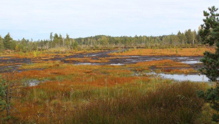 Ir veikti pasākumi mitrāju biotopu pārvaldībai un aizsardzībai Lietuvas un Latvijas pierobežas reģionā. Kāpēc tas ir svarīgi?