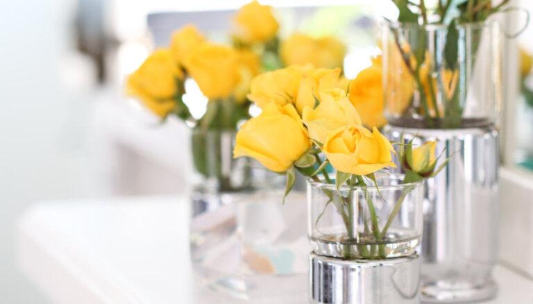 Pilnmēness rituāls ar rozēm – pilnākam naudas makam