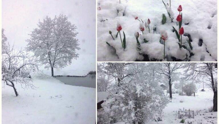 Foto: Kurzemi pārklāj bieza sniega sega