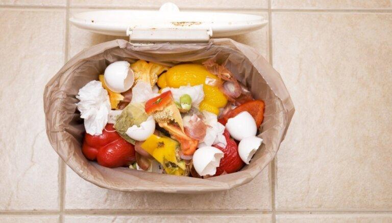 Продукты из мусорника. Как немцы спасают еду