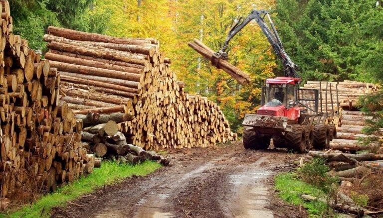 TV3: После работ на границе с Эстонией пропали лесоматериалы на десятки тысяч евро