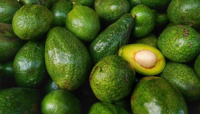 Dienvidamerikas saule tavā šķīvī jeb Veselības superauglis avokado