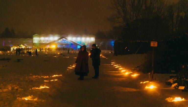 Nacionālais botāniskais dārzs Ziemassvētkos pārtaps krāšņā sveču mežā
