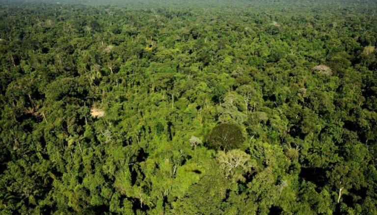 Amazones reģiona valstis paraksta paktu lietusmežu saglabāšanai