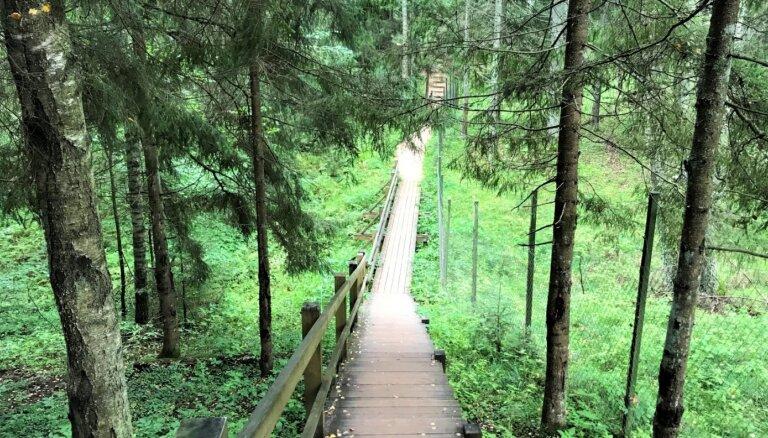 Pārgājieni, velobraucieni un citas aktivitātes: ko darīt GNP Ceļotāju dienā