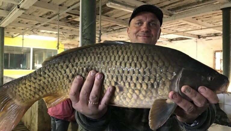 Kūku pagasta zemnieks iegulda vairāk nekā 200 tūkstošus eiro zivju audzēšanā