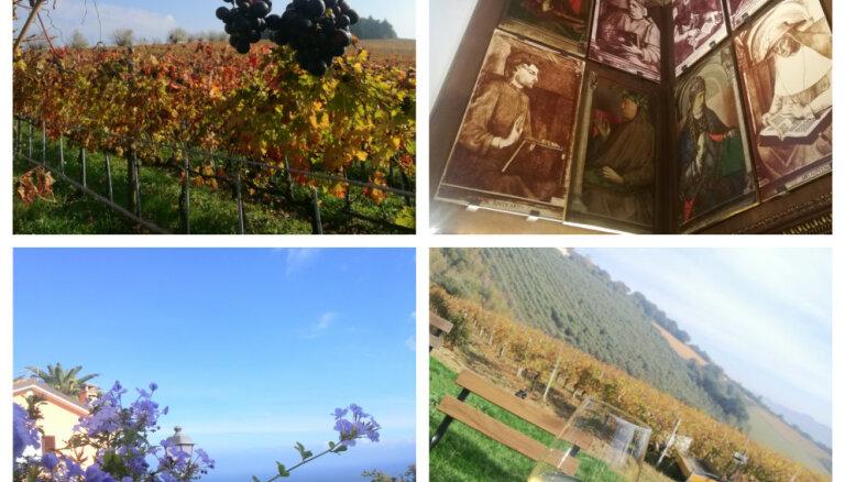 ФОТО. Итальянский регион Марке: море, горы, замки, виноградники. И мало туристов