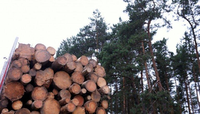 Lems par 3,8 miljonu eiro UIN atlaidi kokapstrādes uzņēmumam 'Rettenmeier Baltic Timber'