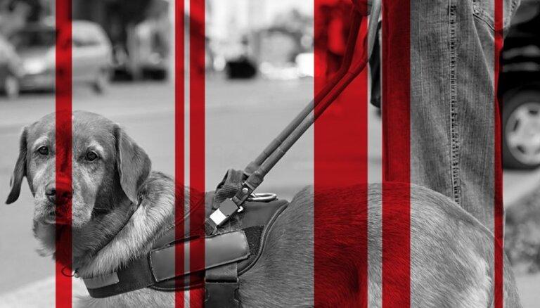 'SSE Riga': Katrs desmitais. Cilvēku ar invaliditāti sociālā un ienākumu nevienlīdzība
