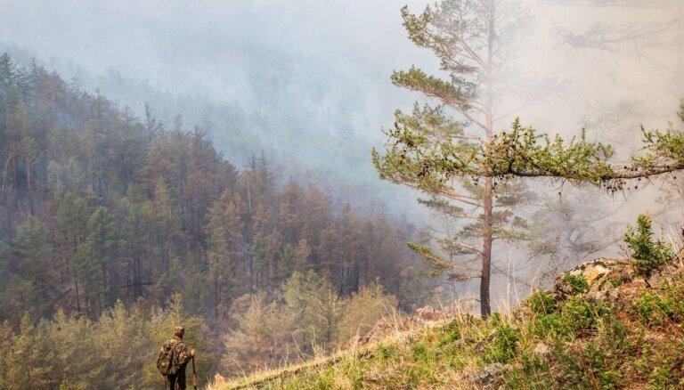 В еще двух регионах России начали раздавать землю бесплатно