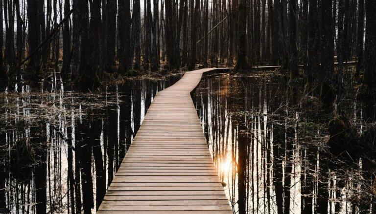 ФОТО, ВИДЕО. Восход солнца на природной тропе озера Слокас