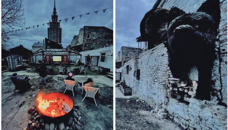 """""""Свобода возможна и в пандемию!"""" Artdocfest/Riga пришел в сквоты, семьи и тюрьмы - кто победил?"""