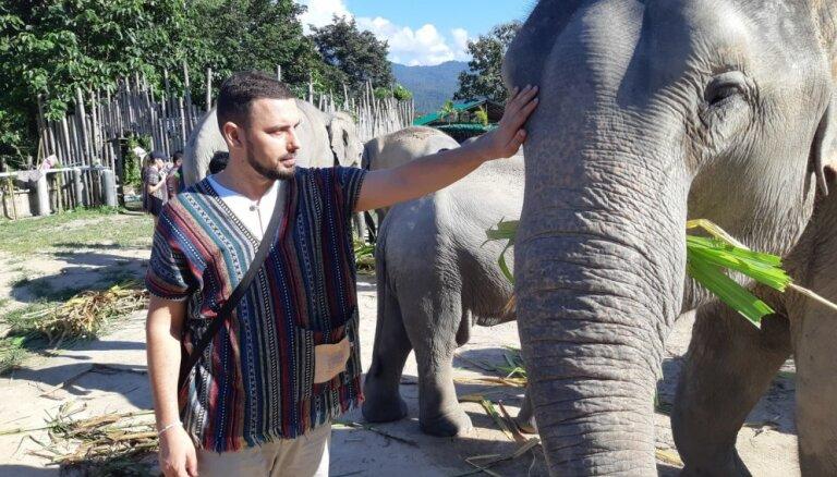 Tempļi, ziloņi un arī sarkano lukturu rajoni: ceļojums uz Taizemi