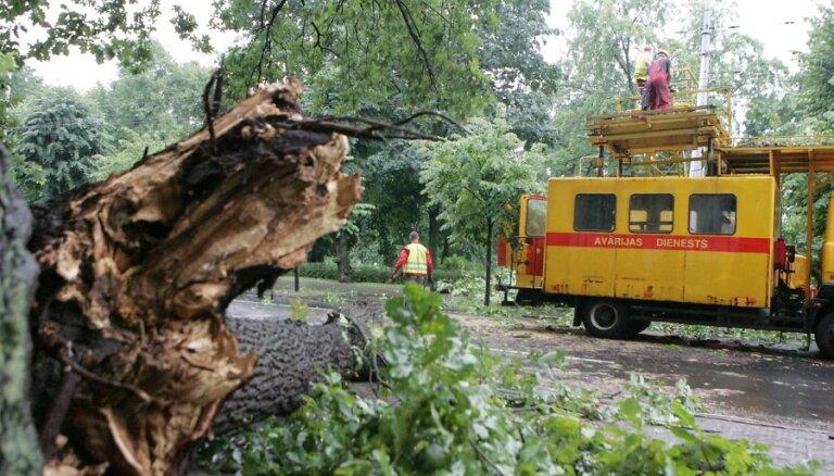 Negaiss trešdien uz ceļiem sagāzis vairāk nekā 60 kokus; aicina būt uzmanīgiem