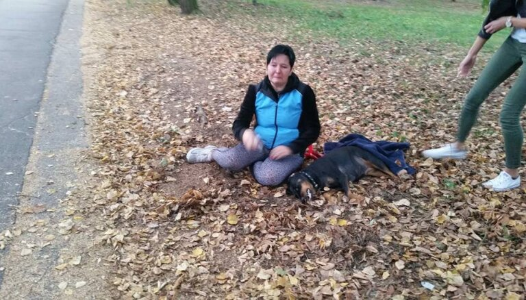 История о сбитой мотоциклом собаке: полиция не нашла виновных и закрыла дело