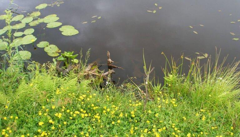 Rāznas ezerā dabas aizsargi pēta zivju daudzveidību