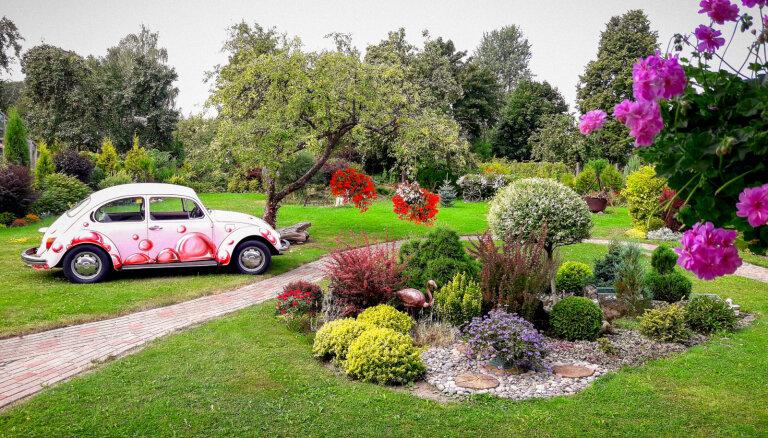 Dārzs, kurā viss aug 'ārpus rāmjiem': Solvitas Balodes košais eksperiments Siguldā