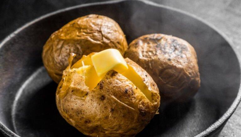 Глазки, ростки и зелень. Насколько опасным может быть картофель?