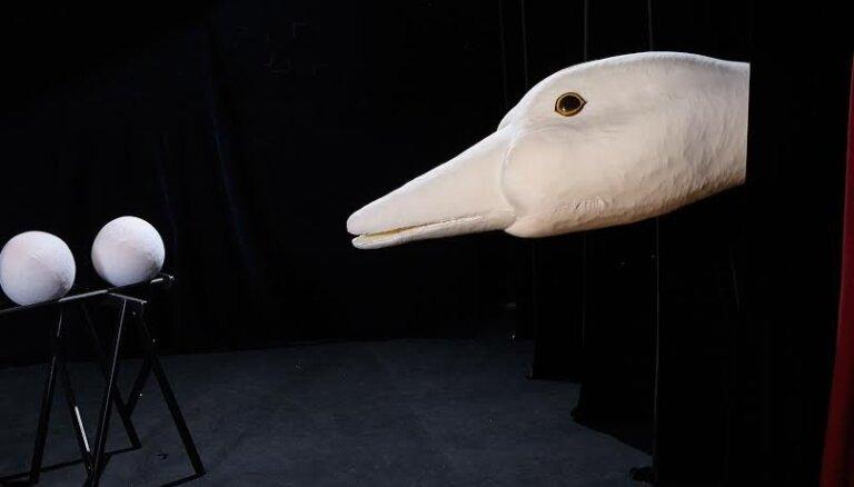 Leļļu teātra latviešu trupā top izrāde 'Neglītais pīlēns'