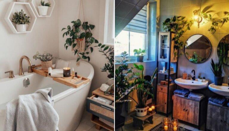 Iedvesmas deva: skaistas idejas vannasistabas iekārtojumam