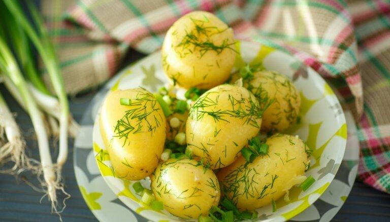 Kartupeļu ceļš uz latviešu vēderiem: populārākās šķirnes un špikeris to izmantošanai