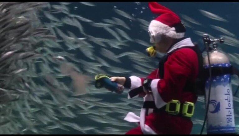 Video: Ziemassvētku vecītis Dienvidkorejā – nirējs un zivju vārdotājs