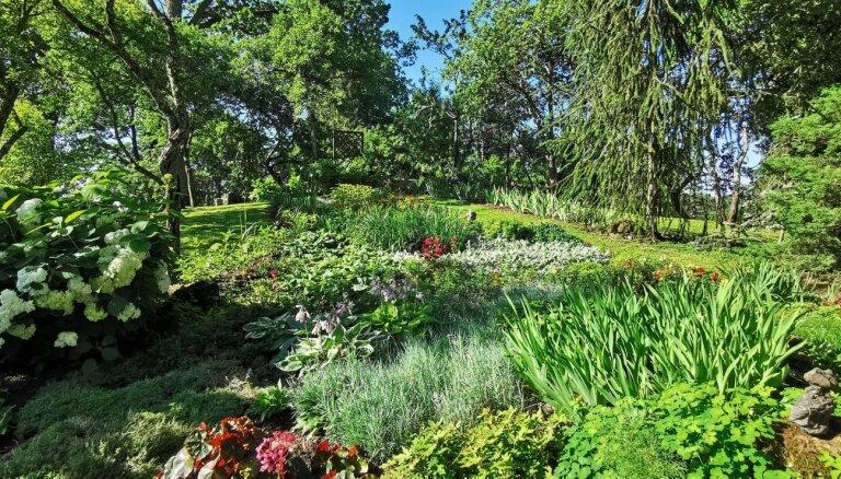 Foto: Aizvadītās vasaras sakoptākās sētas un saimniecības Vecpiebalgas novadā