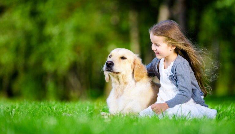PVD просит отозваться всех латвийцев, у кого в последнее время потерялась собака