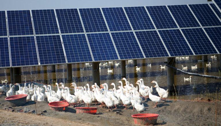 EM rosina apņemties ambiciozākus plānus 'zaļās' enerģijas īpatsvara palielināšanā