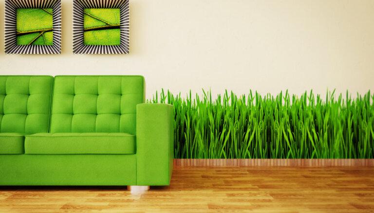 Zaļā krāsa interjerā. Gaišā – dzīvespriekam, tumšā – atpūtai