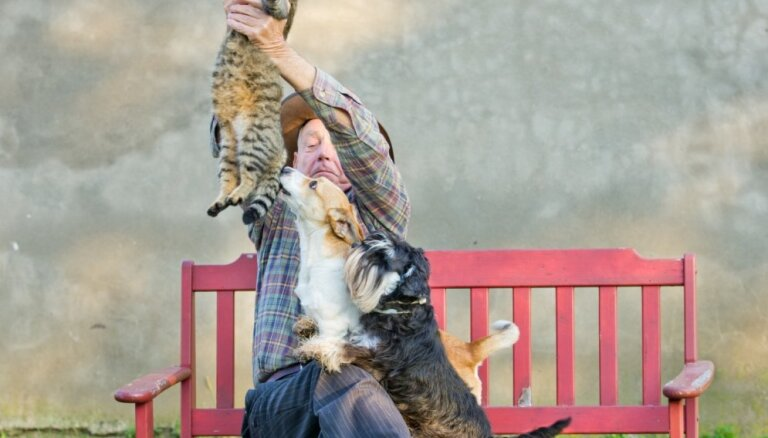 Suņa īpašnieks vai kaķa saimnieks – iezīmes, kas vislabāk raksturo katru no viņiem